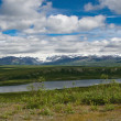 Alaskan Landscape — Stock Photo