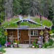 Alaskan Cabin — Stock Photo