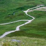 Road through the Tundra — Stock Photo #9375074