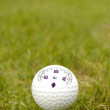 Golf ball whit Compass — Stock Photo
