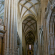 Stock Photo: West Nave of SantMariCathedal of Astorga. Spain