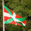 Ikurriña- vask country flag - Stock Photo