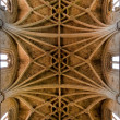 Ceiling Cathedral of Leon in Spain — Stock Photo #8485506