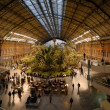 Atocha's station in Madrid,Spain — Stock Photo #8509903