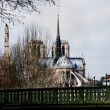 Notre-Dame Cathedral. Paris, France — Foto de Stock