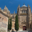 Plateresque facade of New Cathedral. Salamanca, Spain — Stock Photo