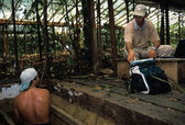 """""""LBA Project on the effects of the child in the Amazon"""" — Stock Photo"""