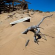 Stock Photo: Bath on dune at kolmanskop's ghost town namibia