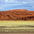 Stock Photo: Large dune in namib naukluft park namibiafrica