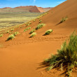 View from the une 45 near sossusvlei & sesriem africa namib naukluft pa — Stock Photo