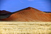 Big orange dune at Sossusvlei Namib Naukluft Park Namibia Africa — Stock Photo