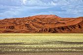 Large dune in the namib naukluft park namibia africa — Stock Photo