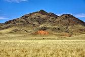 The namibrand nature reserve in the namib naukluft national park namibia — Fotografia Stock