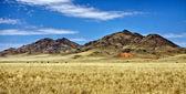 The namibrand nature reserve in the namib naukluft national park — Stock Photo