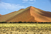 Stora orange dyn på sossusvlei namib naukluft park namibia — Stockfoto