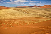 View from the une 45 near sossusvlei & sesriem — Stock Photo
