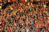 Felicidad de los seguidores de fútbol — Foto de Stock