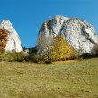 Meadow with white cliffs — Stock Photo