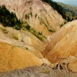 Stock Photo: Badland