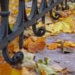 Autumn landscape with a fence — Stock Photo #8345758