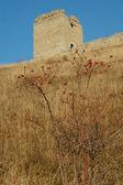 бастион в трансильвании — Стоковое фото
