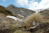 Winter landscape in the Ciucas mountains. Carpathians, Romania — Stock Photo