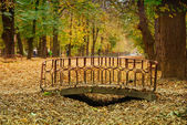 Small foot bridge in a park with Autumn colors — Stock Photo