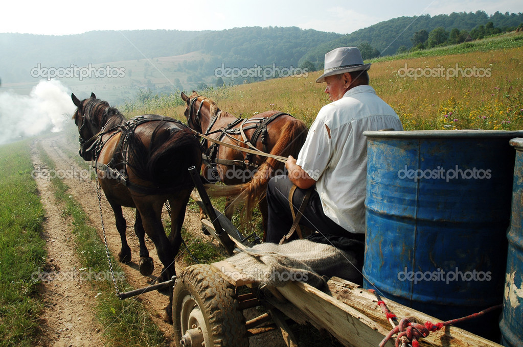 BRATCA POIANA, ROMANIA: Peasant carrying barrels on a horse driven cart, through the hills of Transylvania.   — Stock Photo #8343050