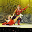 The russian Sankt Petersburg State Ballet on Ice — Stock Photo #8586152
