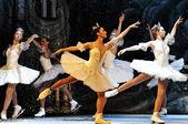 Rosyjski sankt petersburg baletowej na lodzie — Zdjęcie stockowe