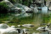 Beautiful quiet water stream in Purcaraccia canyon, Corsica, France — Stock Photo