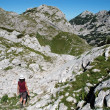 Durmitor National Park, Montenegro — Stock Photo