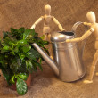 Wooden mannequins with a gardening watering pot and green plant. — Stock Photo