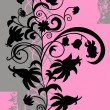 Abstract floral ornament in black, pink and grey colors — Stock Vector