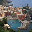 Vernazza aerial view — Stock Photo