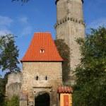 Zvikov Castle — Stock Photo #8419691