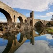 Medieval Bridge of Besalu - Stock Photo