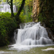 Waterfall in the forest — Stock fotografie