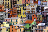 Houses at Manarola - Cinque Terre — Stock Photo