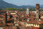 Old town of Lucca — Stock Photo