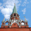 Moscow Kremlin inside, The Trinity (Troitskaya) Tower — Foto Stock