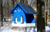 Blue beautiful birds feeder in winter forest in a sunny day — Stock Photo