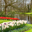Beautiful spring gardens — Stock Photo