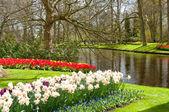 Beautiful spring gardens — Stock Photo