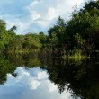 Amazon river, Brazil - Stock Photo
