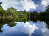 Amazon river, Brazil — Stock Photo