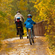 Stock Photo: Active family cycling on bikes outdoors