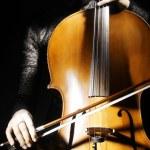 Постер, плакат: Cello classical musician cellist