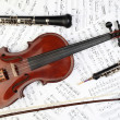 Classical musical instruments notes — Stock Photo #8340760