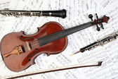 Classical musical instruments notes — Stock Photo